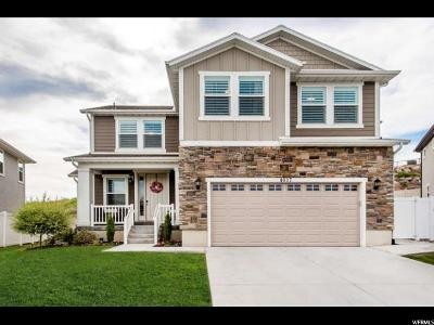 Lehi Single Family Home For Sale: 4037 N 900 W #510