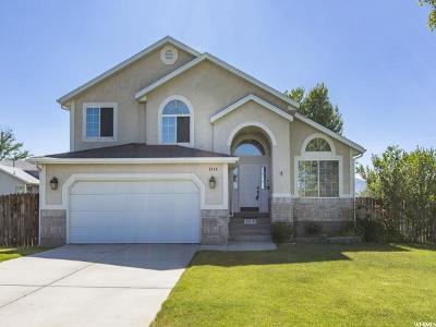 West Jordan Single Family Home For Sale: 9114 Targhee Dr W