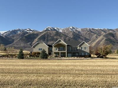 Wellsville Single Family Home For Sale: 3310 S Highway 23 W
