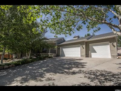 Smithfield Single Family Home For Sale: 881 E 450 S