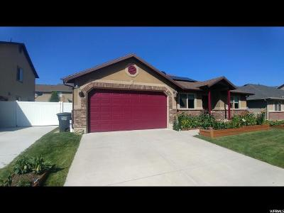Kaysville Single Family Home For Sale: 766 N Stonne Ln