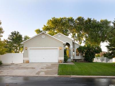 Saratoga Springs Single Family Home For Sale: 204 E Cove Rd
