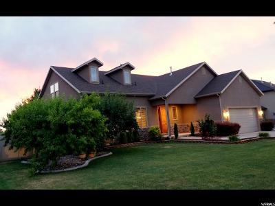 Spanish Fork Single Family Home For Sale: 125 N 1430 E