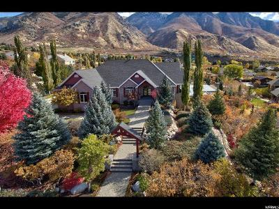 Alpine Single Family Home For Sale: 13528 N Alpine Cove Dr