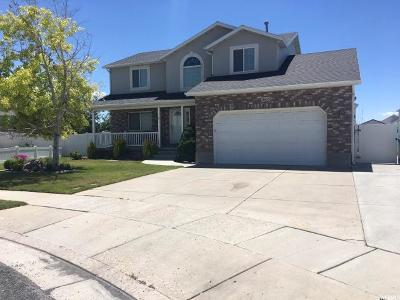 Roy Single Family Home For Sale: 3665 W 4925 S