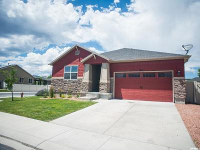 Lehi Single Family Home For Sale: 3146 W Wild Flower Ln N