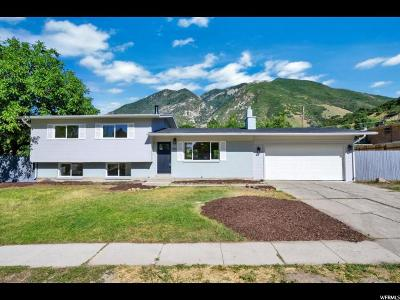 Salt Lake City Single Family Home For Sale: 7333 S Pippin Dr