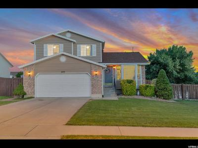Lehi Single Family Home For Sale: 693 W 2600 N