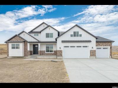Eagle Mountain Single Family Home For Sale: 1403 E Hindley Ln #601