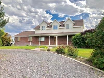Eagle Mountain Single Family Home For Sale: 1020 E Russell Rd