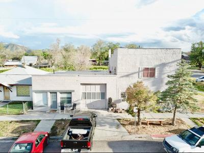 Goshen Multi Family Home For Sale: 14 E Main