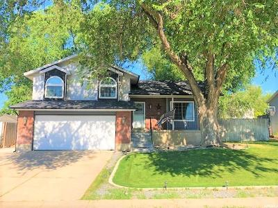 Roy Single Family Home For Sale: 4778 S 2675 W