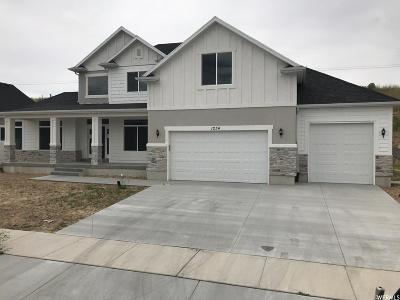 Spanish Fork Single Family Home For Sale: 1234 S River Ridge Ln