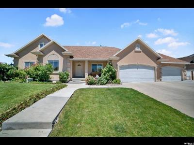 Lehi Single Family Home For Sale: 1363 E Damie Ln