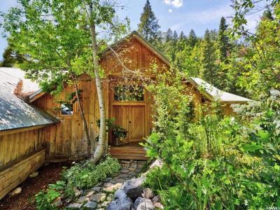 Sundance Single Family Home For Sale: 9383 Canopy Ln