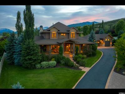Midway Single Family Home For Sale: 542 E Dutch Ridge Ct