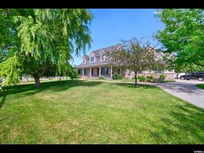Tooele County Single Family Home For Sale: 3878 Droubay Rd