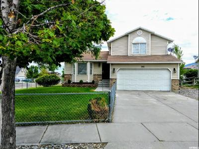 Tooele County Single Family Home For Sale: 743 E 890 N