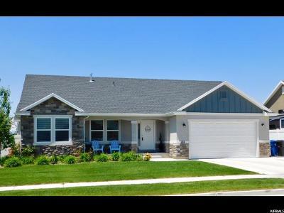 Spanish Fork Single Family Home Backup: 484 S 2430 E