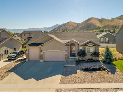 Tooele County Single Family Home For Sale: 1147 S 1050 W
