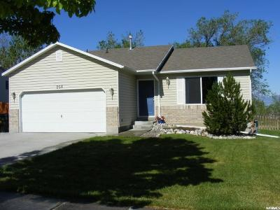 Tooele County Single Family Home For Sale: 251 N 630 E