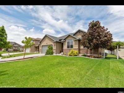 Riverton Single Family Home For Sale: 4746 W Salish Cir S