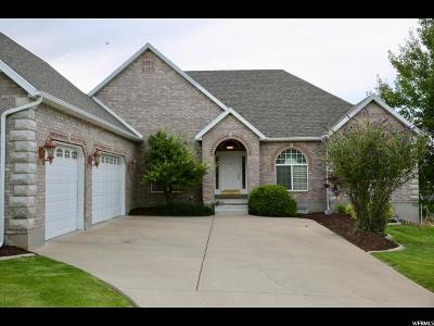Elk Ridge Single Family Home For Sale: 324 S Elk Ridge Dr