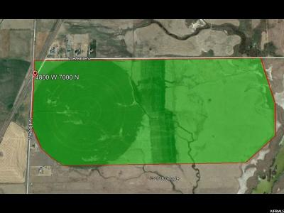 Cache County Farm For Sale: 6900 N 4800 W