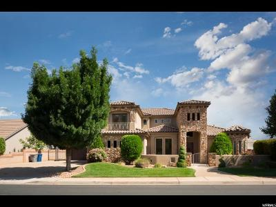 St. George Single Family Home For Sale: 2867 E 1190 S
