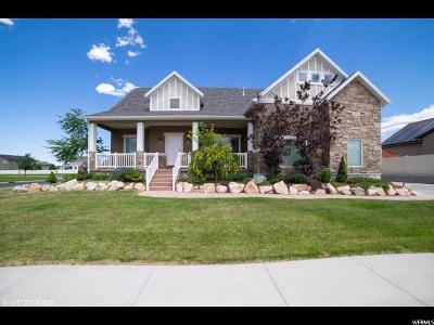 Tooele County Single Family Home For Sale: 484 W Morning View Way
