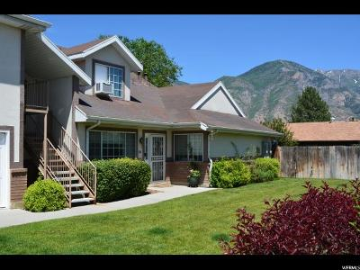 Orem, Provo Townhouse For Sale: 1035 S 250 W