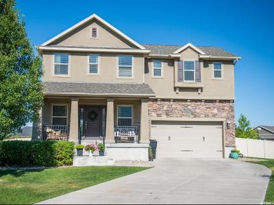 Kaysville Single Family Home For Sale: 879 W Saddlebrook Dr