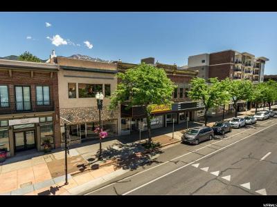 Ogden Commercial For Sale: 2242 S Washington Blvd E