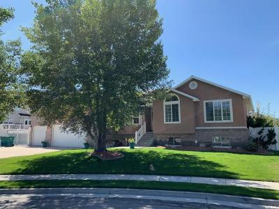 Riverton Single Family Home For Sale: 11784 S Stone Ridge Ct. Ct W