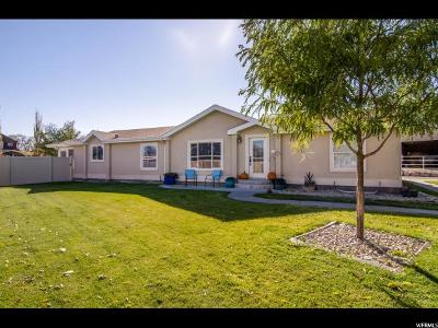 Herriman Single Family Home For Sale: 7539 W Jem Cir S