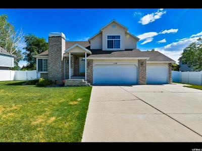 Lehi Single Family Home For Sale: 1141 E 2450 N