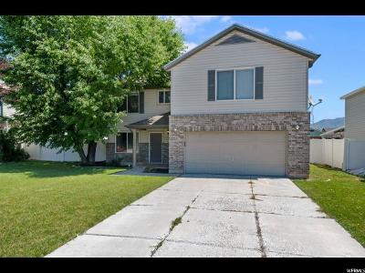 Clearfield Single Family Home For Sale: 1825 S 875 E