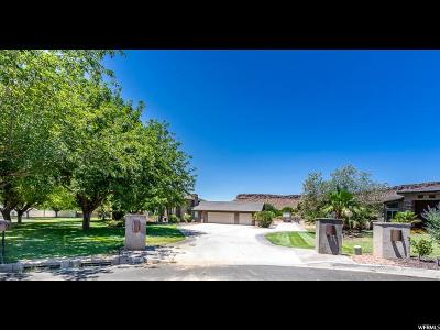 St. George Single Family Home For Sale: 364 W Count Fleet Rd