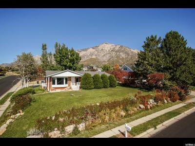 Weber County Single Family Home For Sale: 782 W 4050 N