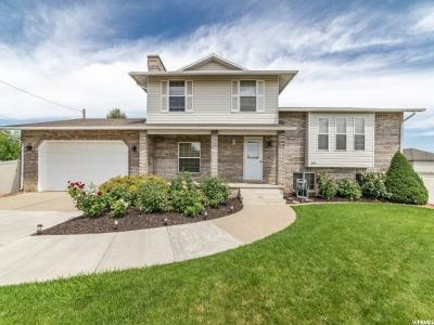 Weber County Single Family Home For Sale: 3392 S 4700 W