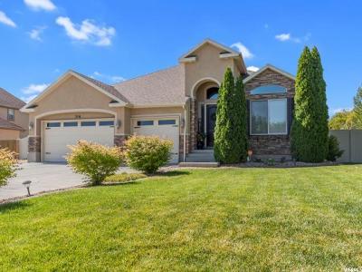 Grantsville Single Family Home For Sale: 314 E Box Elder Dr S #306