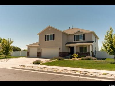 Weber County Single Family Home For Sale: 2407 N 600 W