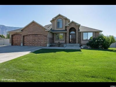 Weber County Single Family Home For Sale: 3534 N Remuda Dr