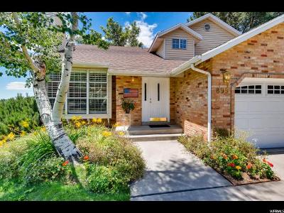 Alpine Single Family Home Under Contract: 895 N Eastview Dr E