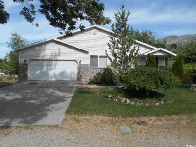 Santaquin Single Family Home For Sale: 356 N Center St E