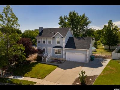 Layton Single Family Home For Sale: 460 S 755 E