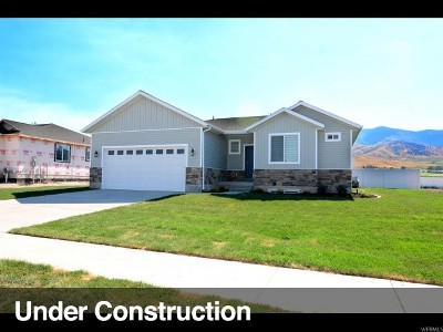 Smithfield Single Family Home For Sale: 625 S 280 E