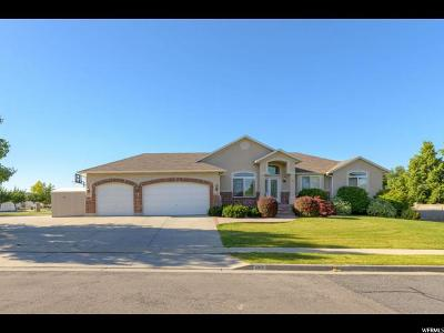 West Jordan Single Family Home For Sale: 4816 W Morning Laurel Ln