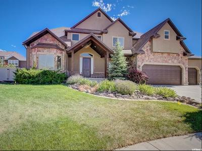 Herriman Single Family Home For Sale: 6977 W Boulder Ridge Cir S