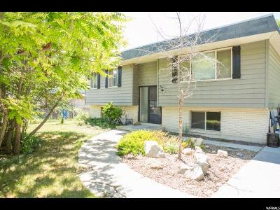 Logan Single Family Home For Sale: 355 S 500 W